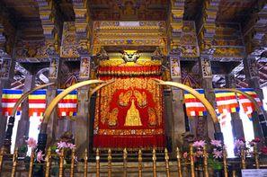 Vacances Colombo: Autotour Sri Lanka en Liberté + extension Maldives au Paradise Island