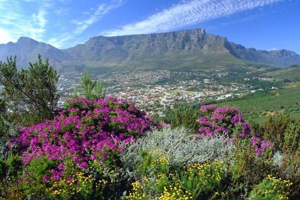 Circuit paysages sud africains afrique du sud fram for Agence cap paysages