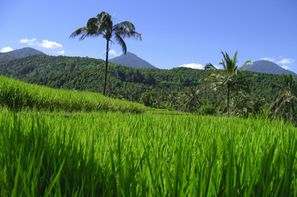 Vacances Denpasar: Circuit Trésors d'Indonésie