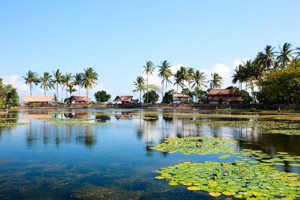 Nature - Circuit Secrets de Bali