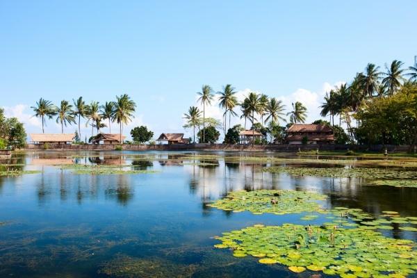 Nature - Circuit De Bali aux iles Gili