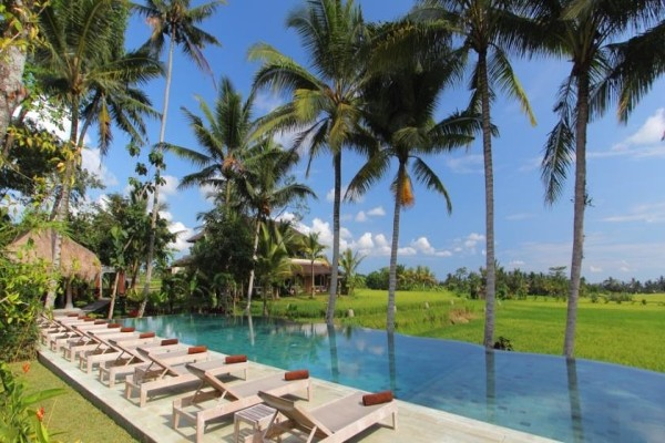 Piscine Retreat - Charming Bali Avec Secret Retreats 4 à Bali