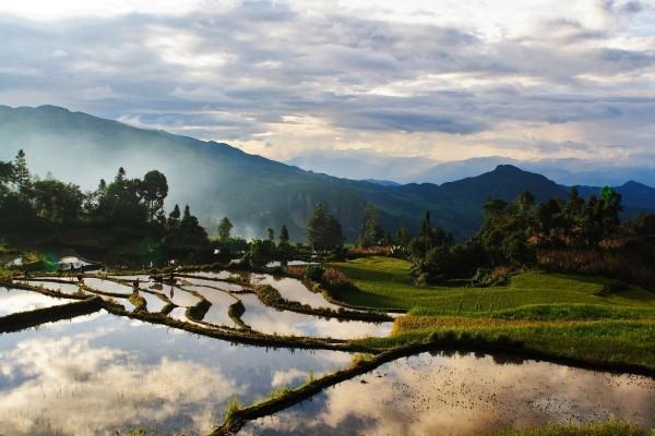 Nature - Circuit Paysages de Chine