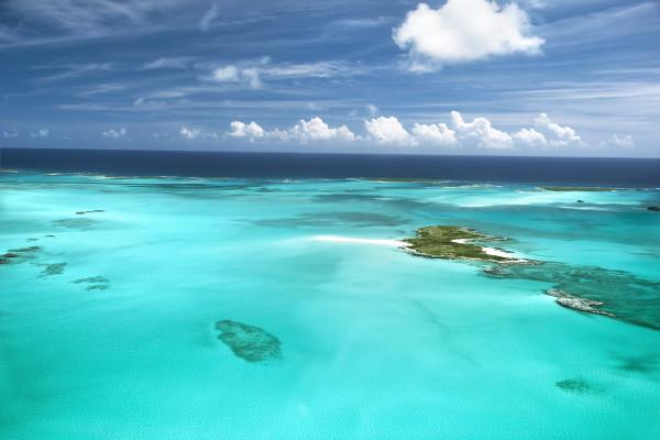 Nature - Circuit Découverte de la Floride+ Croisière aux Bahamas+ Extension Miami
