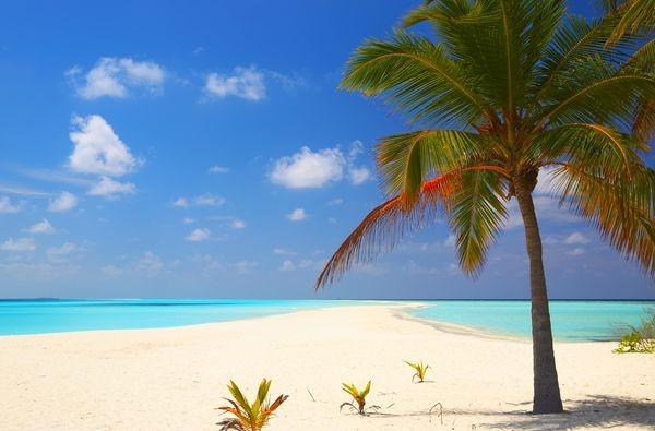 Plage - Circuit Premiers Regards Floride & Bahamas + Miami