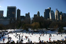 New York - Central Park En Hiver - Indispensable New York aux Etats-Unis