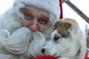 Finlande-Kittila, Circuit A la rencontre du Père Noël en Laponie