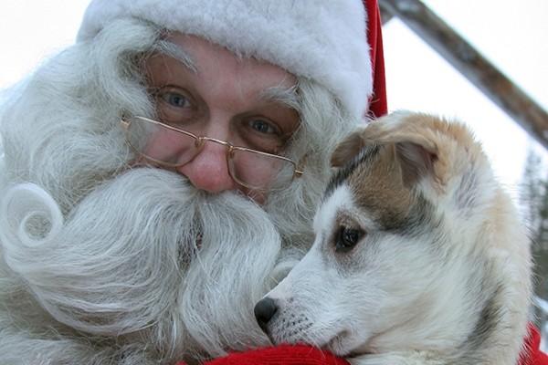(fictif) - Circuit A la rencontre du Père Noël en Laponie 3*