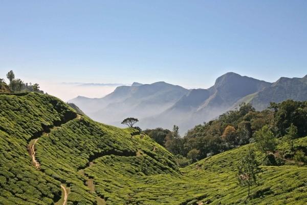 Nature - Circuit Inoubliables de l'Inde du Sud 2017
