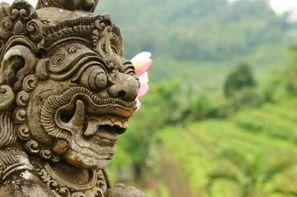 Indonesie-Yogyakarta, Circuit Indispensable Indonésie