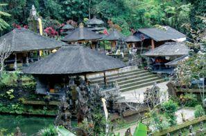 Vacances Denpasar: Circuit De Java à Bali