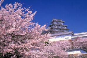 Japon - Osaka, Circuit Japon Autrement