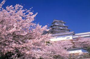 Vacances Tokyo: Circuit Japon Passé & Présent