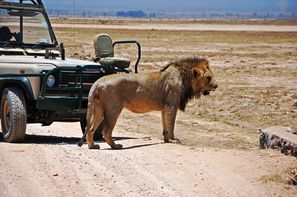 Kenya-Nairobi, Circuit Safari Jambo et Extensions balnéaires