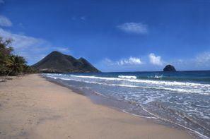 Vacances Trois-Ilets: Circuit L'île aux fleurs, logement Bambou
