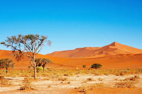 Voyages Namibie