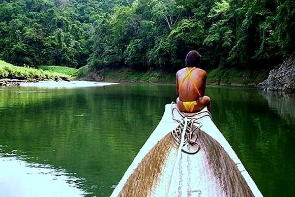 Nature - Circuit Indispensable Panama