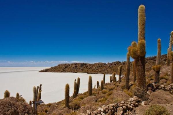 Nature - Circuit Pérou-Bolivie,immersion Andine 3*
