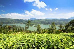 Vacances Colombo: Autotour Grand Tour du Sri Lanka + Extension Plage