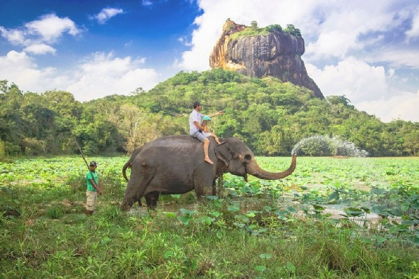 Nature - Circuit Indispensable Sri Lanka