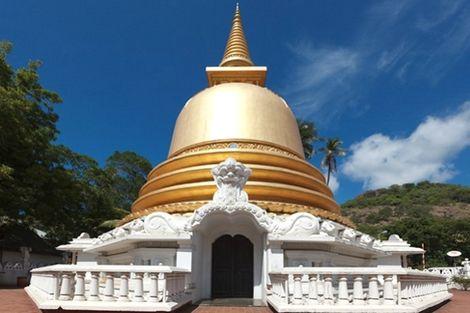 Visiteurs En Asie Sri Lanka