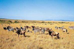"Vacances Arusha: Circuit - Safari ""Magie de la Tanzanie"" - 2 sites UNESCO"