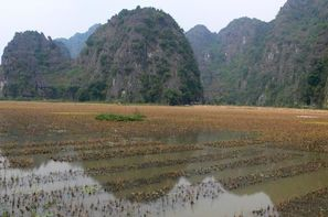 Vacances Hanoi: Circuit Paysages d'Indochine