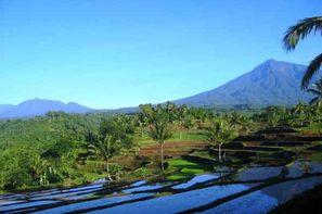 Vacances Denpasar: Combiné hôtels Combiné de villas : de la jungle d'Ubud aux sables de Bali