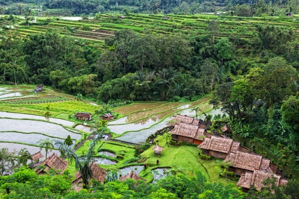 Bali Générique
