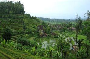 Bali-Denpasar, Combiné circuit et hôtel Circuit Charme et séjour au Sanur Paradise