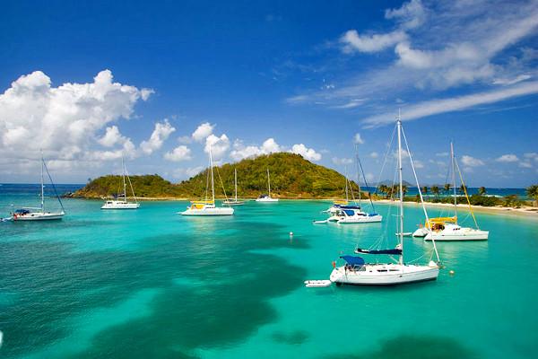 Nature - Combiné croisière et hôtel Croisière Grenadines + séjour au Village Vacances Pierre & Vacances Sainte Luce 3*