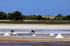 Senegal - Dakar, Combiné circuit et hôtel Plages, Culture & Traditions avec extension à l'Africa Queen - Combiner la découverte des plus grands sites à une extension balnéaire : c'est la formule idéale pour profiter pleinement du Sénégal !
