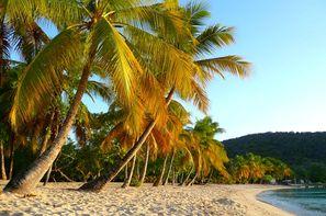 Vacances Pointe-à-Pître: Croisière Douceur des Petites Antilles - Costa Magica