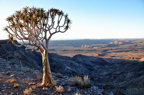 Fish River Canyon en Namibie