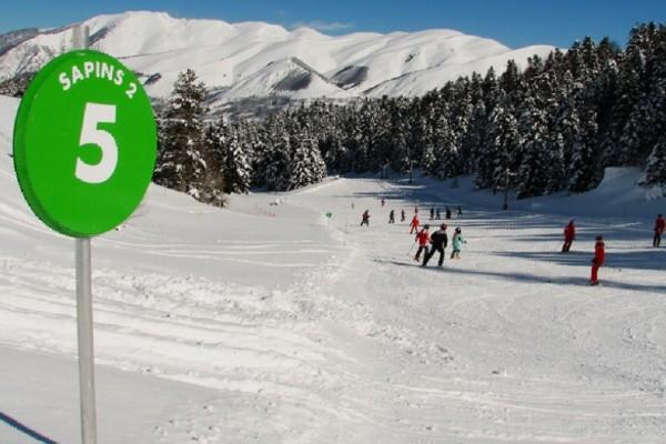 amener son chien au ski
