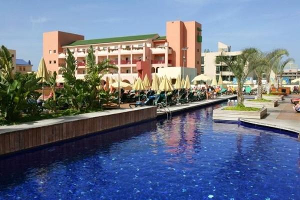 piscine - Jacaranda