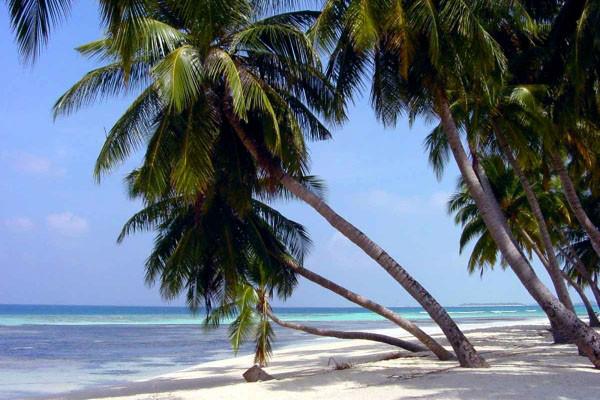 Plage - Résidence hôtelière Caraibes Bonheur