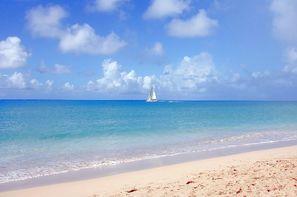 Vacances Pointe A Pitre: Combiné hôtels Combiné 3* Charme : Guadeloupe au Caraib'Bay & Martinique à la Villa Melissa + Location de voiture