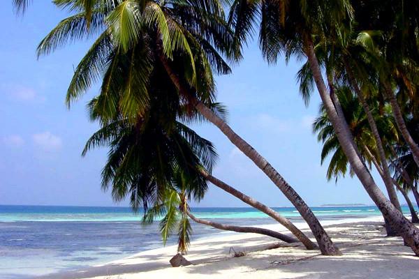 Plage - Combiné hôtels Combiné Guadeloupe : Basse-Terre au Caraib'Bay 3* & Marie-Galante au Village de Ménard + location de voiture cat A 3*
