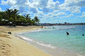 Vacances Le Moule: Résidence locative Résidence Tropicale + Loc Voiture