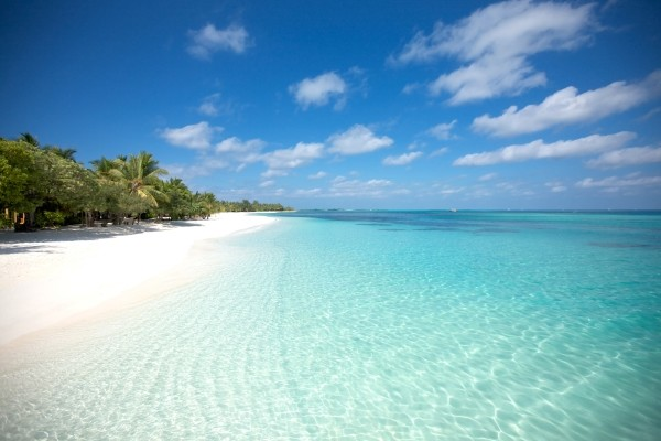 Plage - LUX* South Ari Atoll