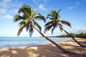 Martinique-Fort De France, Village Vacances Pierre & Vacances Ste-Luce