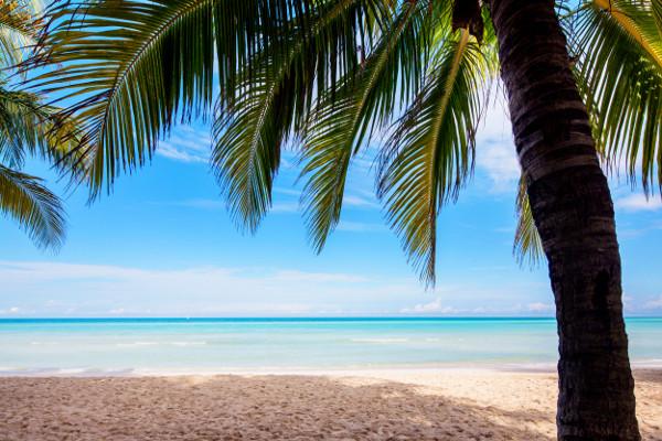 Hôtel Memories Caribe Beach 4*
