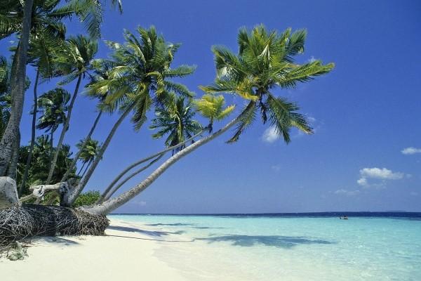 Croisière A la voile Maldives + séjour au Biyadhoo Island Resort 3* - voyage  - sejour