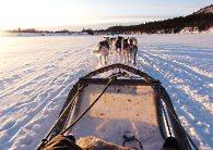 Séjours multiactivités En Laponie