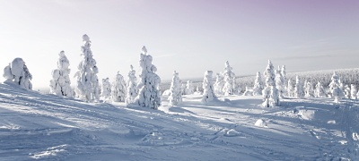 Séjours en Laponie Toutes nos offres