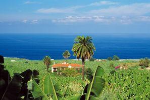 Vacances Tenerife: Autotour Pack Liberté Hôtel Vincci Tenerife