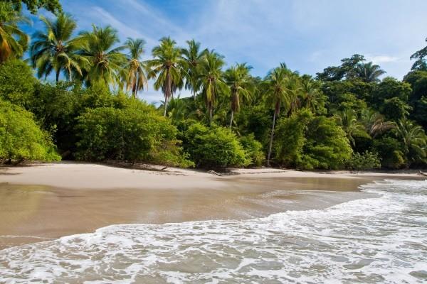 Plage - Autotour Costa Rica Pura Vida & plage San jose Costa Rica