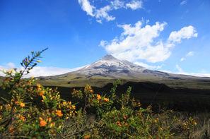 Vacances Quito: Autotour Découverte de l'Equateur