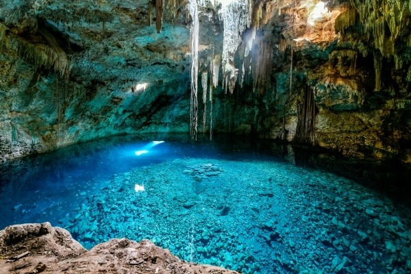 Nature - Yucatan Cancun Mexique
